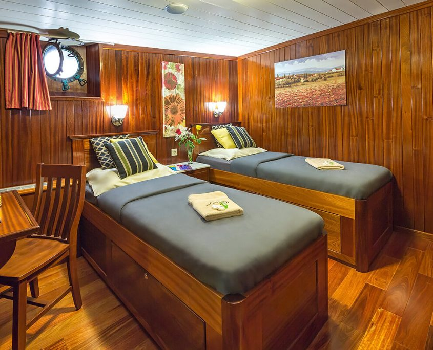 Twin Room on Lower Deck